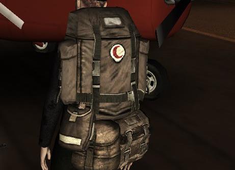 Рюкзаки в dayz чемоданы сумки купить киев